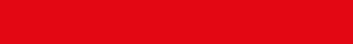 DS.logo